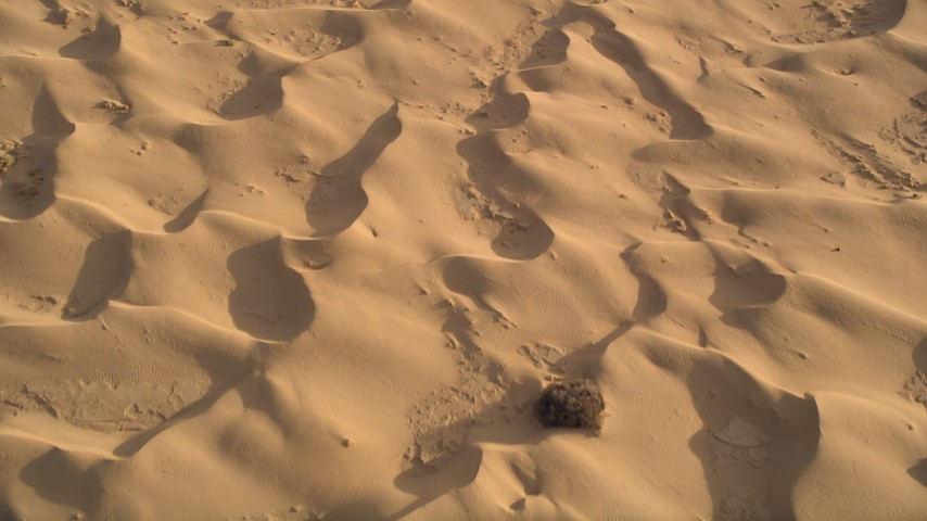 5K stock footage aerial video fly over sand dunes, Kelso Dunes, Mojave Desert, California Aerial Stock Footage   AX0012_019E