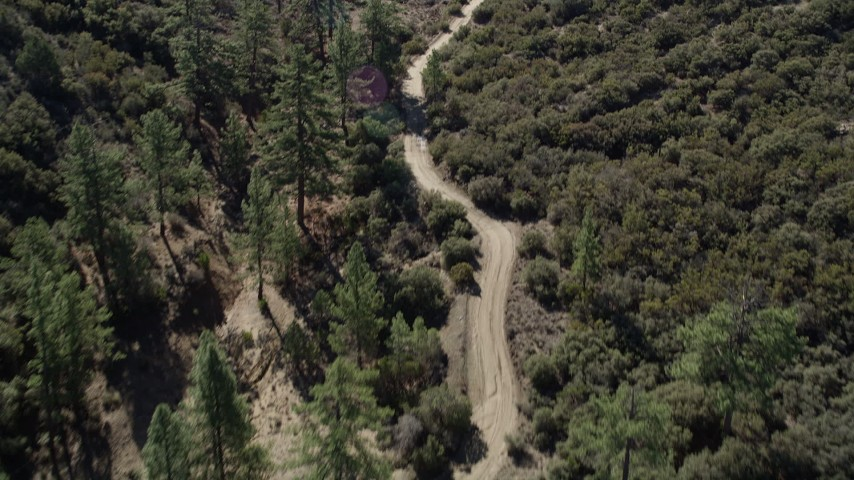 5K aerial video following a dirt road bordered by trees, San Jacinto Mountains, California Aerial Stock Footage | AX0014_013