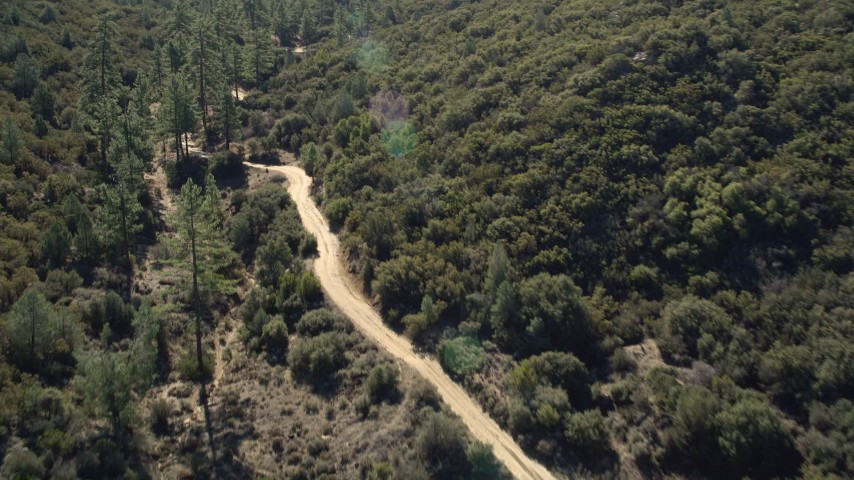 5K stock footage aerial video following a dirt road bordered by trees, San Jacinto Mountains, California Aerial Stock Footage | AX0014_013E