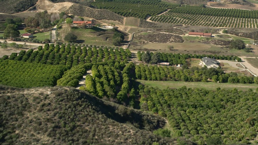 5K stock footage aerial video of flying over farmland and orchards, Temecula, California Aerial Stock Footage | AX0014_034