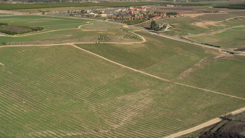 5K stock footage aerial video of flying over a crop field in Temecula, California Aerial Stock Footage | AX0014_058