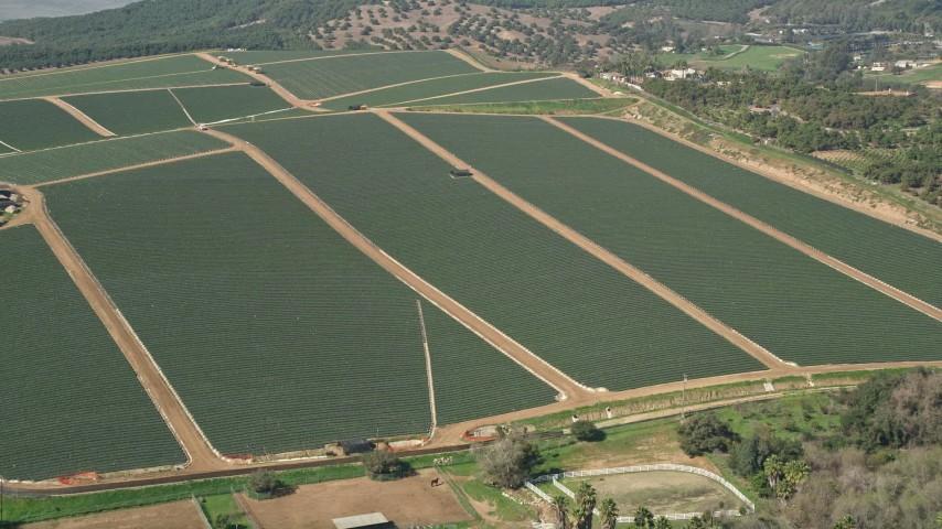5K stock footage aerial video approach farmland, Fallbrook, California Aerial Stock Footage | AX0015_030
