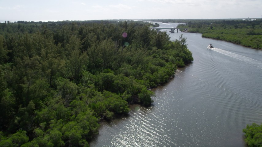 5K stock footage aerial video fly over mangroves lining the Indian River near a small bridge, Florida Aerial Stock Footage | AX0019_016