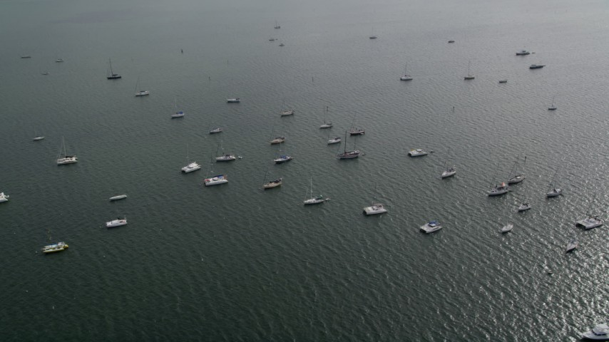 5K stock footage aerial video flyby catamarans and sailing boats anchored near Coconut Grove, Florida Aerial Stock Footage | AX0021_151