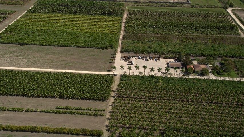 5K stock footage aerial video of flying over crops and farmland, Homestead, Florida Aerial Stock Footage | AX0025_009