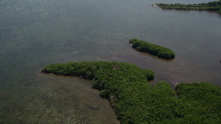 5K stock footage aerial video of flying over Mangrove Preserve on the coast, Homestead, Florida Aerial Stock Footage | AX0025_015