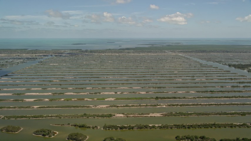 5K stock footage aerial video of flying by Turkey Point Power Plant cooling canal system, Homestead, Florida Aerial Stock Footage | AX0025_027
