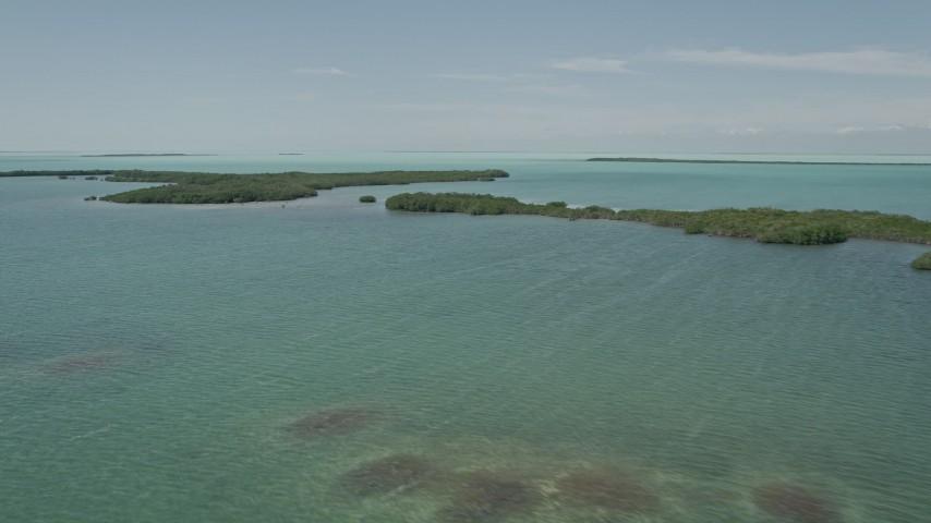 5K stock footage aerial video of flying by coastal mangroves, Key Largo, Florida Aerial Stock Footage | AX0025_072