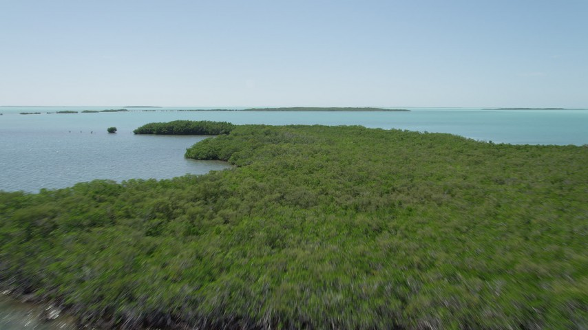 5K stock footage aerial video of flying over mangroves off the shore, Key Largo, Florida Aerial Stock Footage | AX0025_074