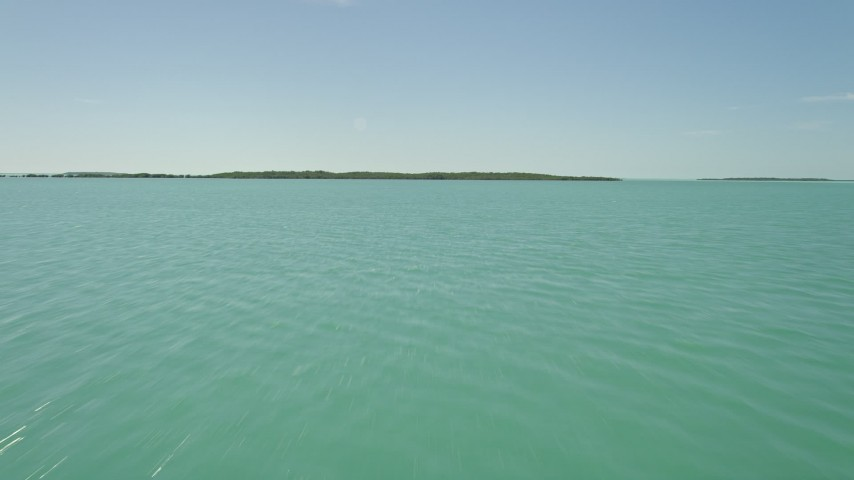 5K stock footage aerial video of flying low over water, approaching mangroves on shore, Key Largo, Florida Aerial Stock Footage | AX0025_075