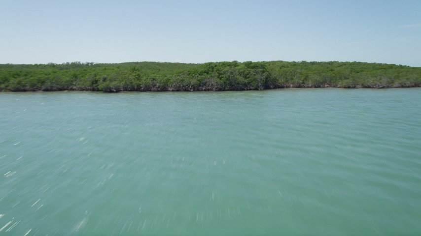5K stock footage aerial video of flying over water, tilt up to reveal and fly over mangroves, Key Largo, Florida Aerial Stock Footage | AX0025_076
