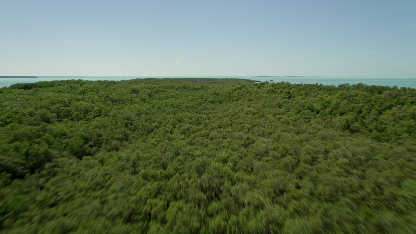 5K stock footage aerial video of flying over water, tilt up to reveal and fly over mangroves, Key Largo, Florida Aerial Stock Footage | AX0025_076E