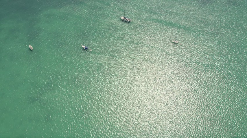 5K stock footage aerial video of a bird's eye view of sailboats and catamarans, Islamorada, Florida Aerial Stock Footage | AX0025_113