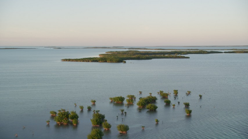 5K stock footage aerial video of flying over clusters of mangroves at sunset, Islamorada, Florida Aerial Stock Footage | AX0028_024