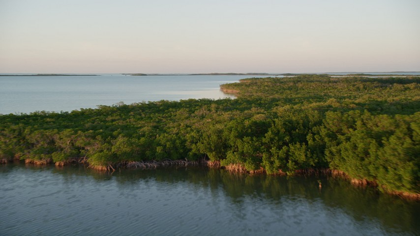 5K aerial video of flying over mangroves on an island at sunset, Islamorada, Florida Aerial Stock Footage | AX0028_025