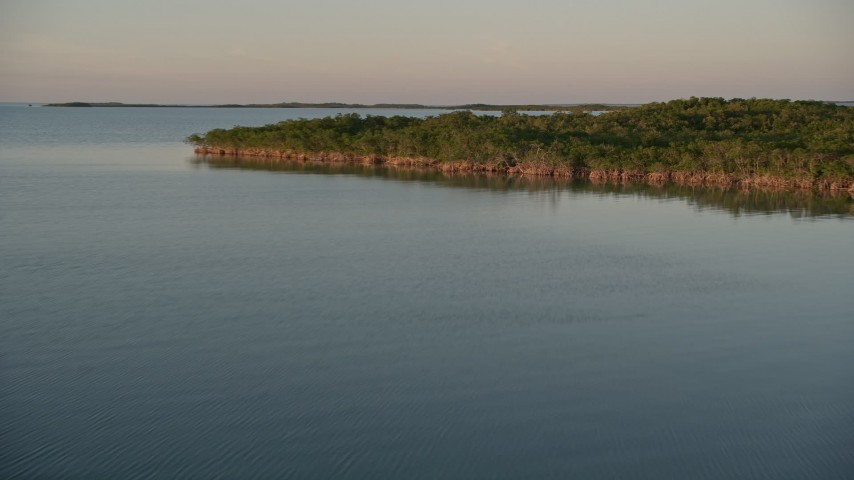 5K stock footage aerial video of flying over mangroves on at sunset, Islamorada, Florida Aerial Stock Footage | AX0028_026