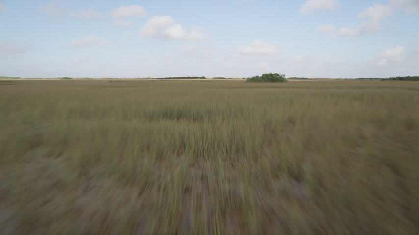 5K stock footage aerial video of racing over marshland, Florida Everglades, Florida Aerial Stock Footage | AX0030_026