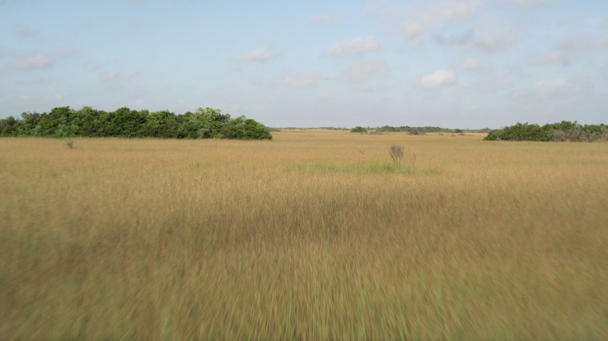 5K stock footage aerial video of flying low over marshland, Florida Everglades, Florida Aerial Stock Footage | AX0030_029