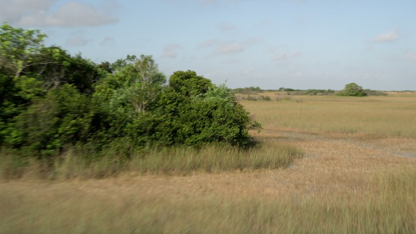 5K stock footage aerial video of panning across marshland, Florida Everglades, Florida Aerial Stock Footage | AX0030_030