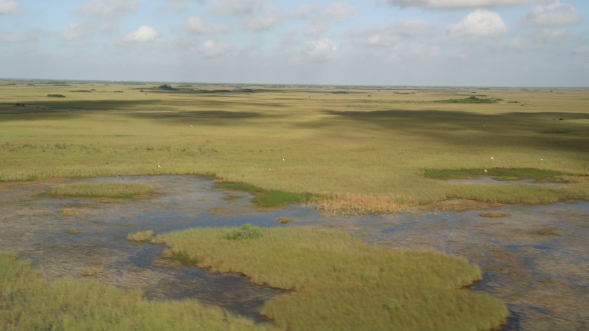 5K stock footage aerial video of flying by marshland, Florida Everglades, Florida Aerial Stock Footage | AX0030_031