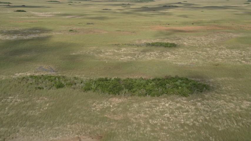 5K stock footage aerial video of cloud shadows on marshland, Florida Everglades, Florida Aerial Stock Footage   AX0030_032