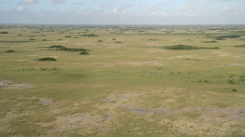5K stock footage aerial video of a view of marshland, Florida Everglades, Florida Aerial Stock Footage | AX0030_035
