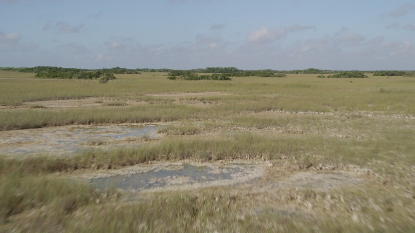 5K stock footage aerial video of flying low over marshland, reveal country road, Florida Everglades, Florida Aerial Stock Footage   AX0030_041