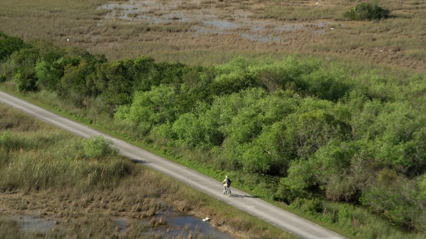5K stock footage aerial video of approaching cyclist on country road, Florida Everglades, Florida Aerial Stock Footage | AX0030_043