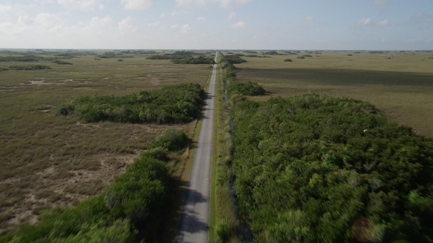 5K stock footage aerial video of following a country road, Florida Everglades, Florida Aerial Stock Footage | AX0030_044