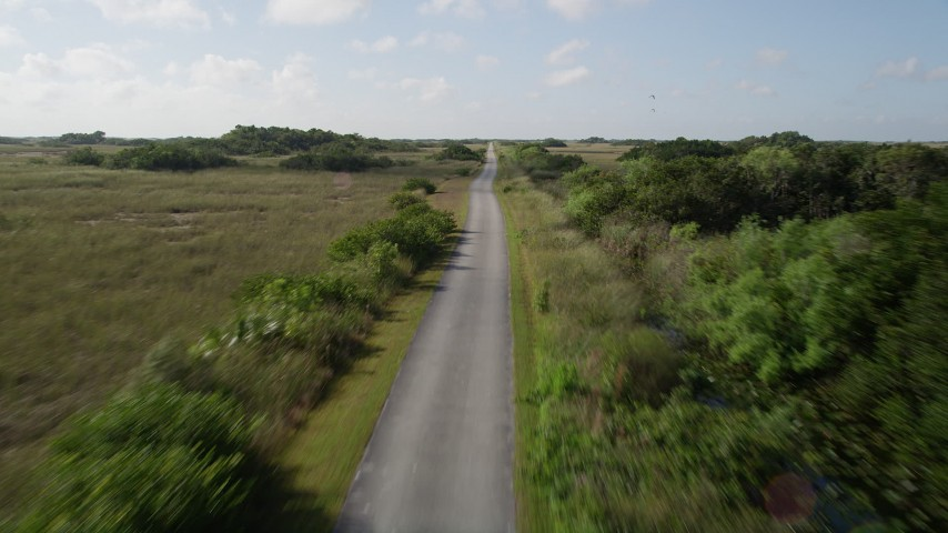 5K stock footage aerial video of following a country road, Florida Everglades, Florida Aerial Stock Footage | AX0030_046