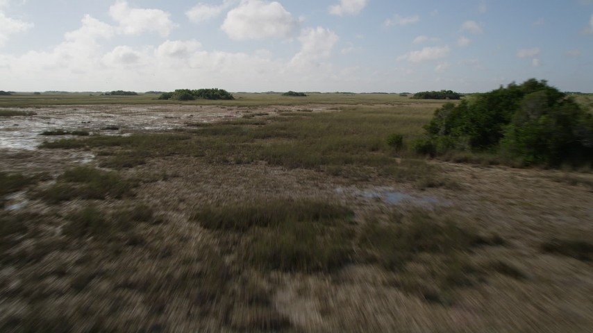 5K stock footage aerial video of flying over marshland, Florida Everglades, Florida Aerial Stock Footage | AX0030_049