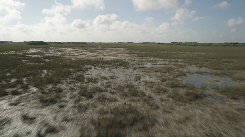 5K stock footage aerial video of flying over marshland in the Florida Everglades, Florida Aerial Stock Footage | AX0030_051