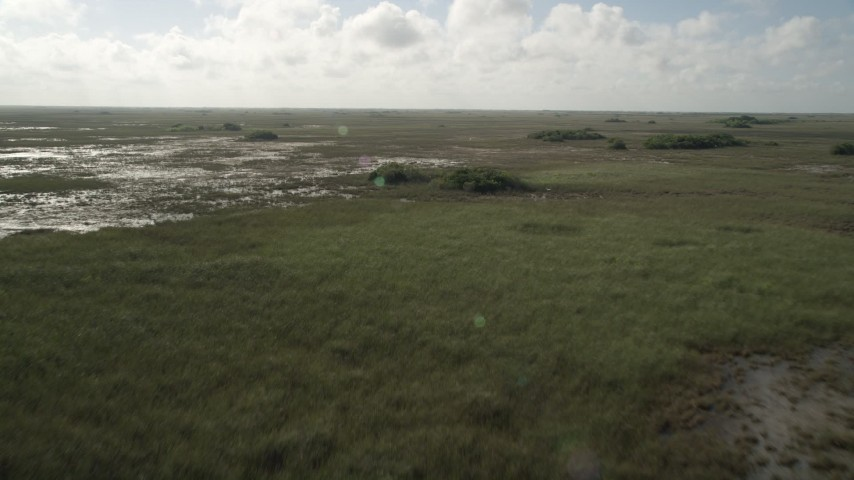 5K stock footage aerial video of flying over marshland, ascend and tilt to marshes, Florida Everglades, Florida Aerial Stock Footage | AX0030_052