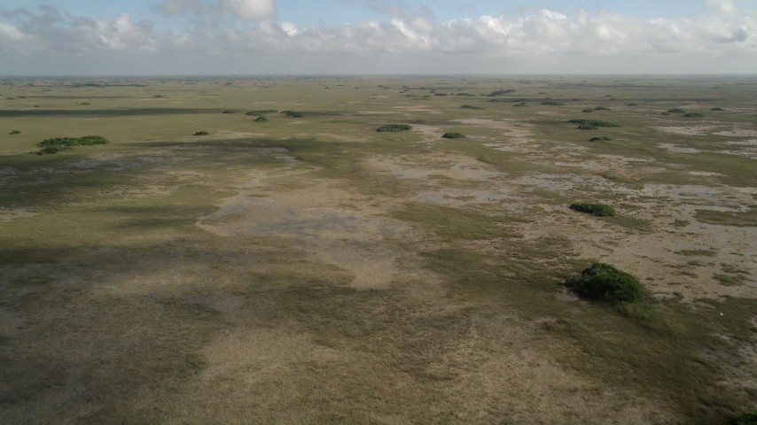 5K stock footage aerial video of flying over marshland, wide view, Florida Everglades, Florida Aerial Stock Footage | AX0030_053