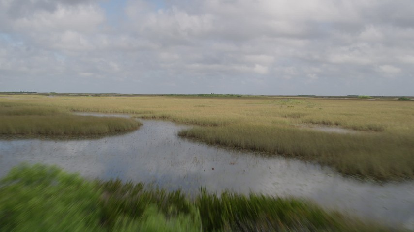5K stock footage aerial video of flying low over marshes, Florida Everglades, Florida Aerial Stock Footage | AX0030_068