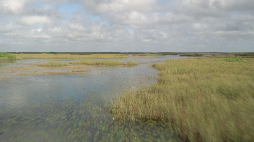 5K stock footage aerial video of flying low over marshes, Florida Everglades, Florida Aerial Stock Footage | AX0030_069