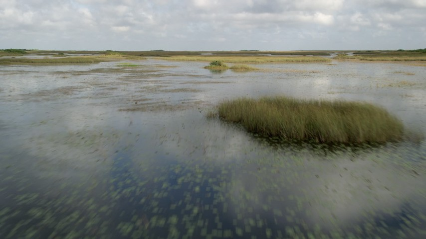 5K stock footage aerial video of flying low over wetlands, Florida Everglades, Florida Aerial Stock Footage | AX0030_070