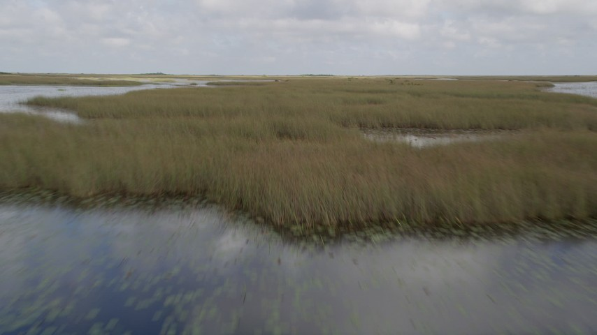 5K stock footage aerial video of flying low over wetlands in the Florida Everglades, Florida Aerial Stock Footage | AX0030_071