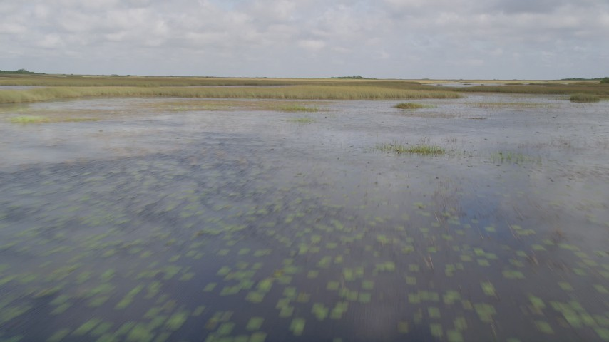 5K stock footage aerial video of flying low over marshland, Florida Everglades, Florida Aerial Stock Footage | AX0030_072