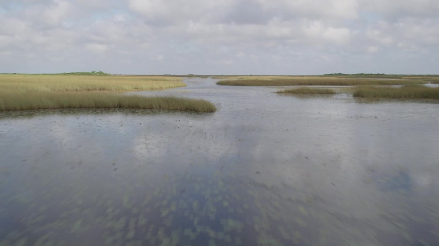 5K stock footage aerial video of flying low over marshland, Florida Everglades, Florida Aerial Stock Footage   AX0030_073