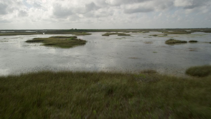 5K stock footage aerial video of flying low over marshland, Florida Everglades, Florida Aerial Stock Footage | AX0030_077