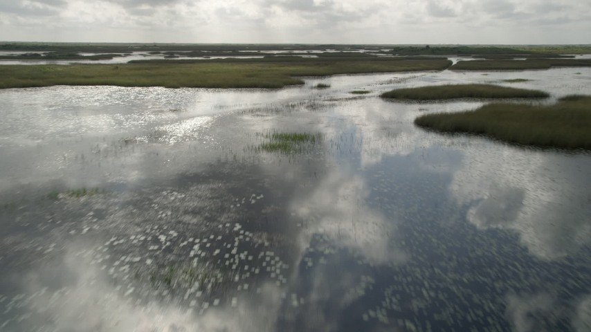 5K stock footage aerial video of flying over wetlands in the Florida Everglades, Florida Aerial Stock Footage | AX0030_082
