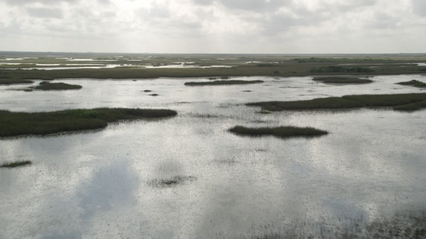 5K stock footage aerial video of flying over marshes and wetlands, Florida Everglades, Florida Aerial Stock Footage | AX0030_084