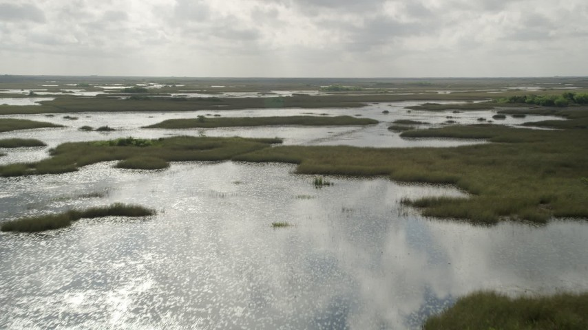 5K stock footage aerial video of passing low over marshland, Florida Everglades, Florida Aerial Stock Footage   AX0030_085