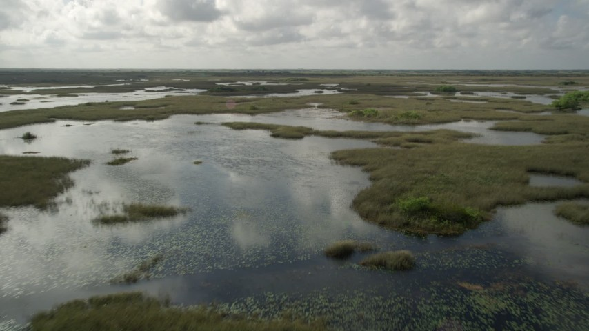 5K stock footage aerial video of flying over marshland, tilt to the water, Florida Everglades, Florida Aerial Stock Footage | AX0030_087