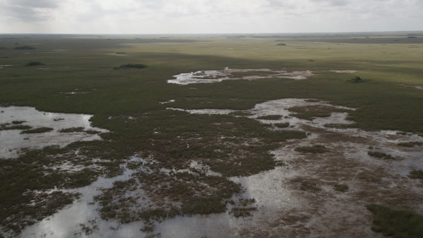5K stock footage aerial video of flying over marshland, Florida Everglades, Florida Aerial Stock Footage | AX0030_091