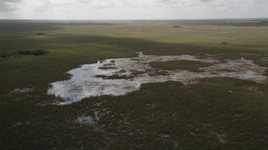 5K stock footage aerial video of flying over marshland, descending toward marshes, Florida Everglades, Florida Aerial Stock Footage | AX0030_092