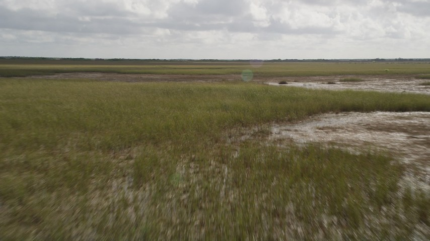 5K stock footage aerial video of flying low over marshland, Florida Everglades, Florida Aerial Stock Footage | AX0030_097