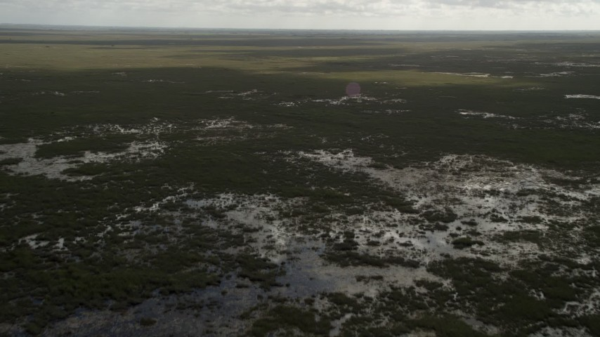5K aerial stock footage video of flying over marshland with a wide view, Florida Everglades, Florida Aerial Stock Footage | AX0030_115