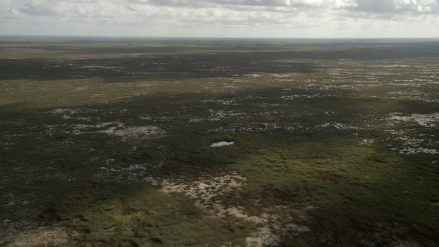 5K stock footage aerial video of flying over marshland, wide angle view, Florida Everglades, Florida Aerial Stock Footage | AX0030_116